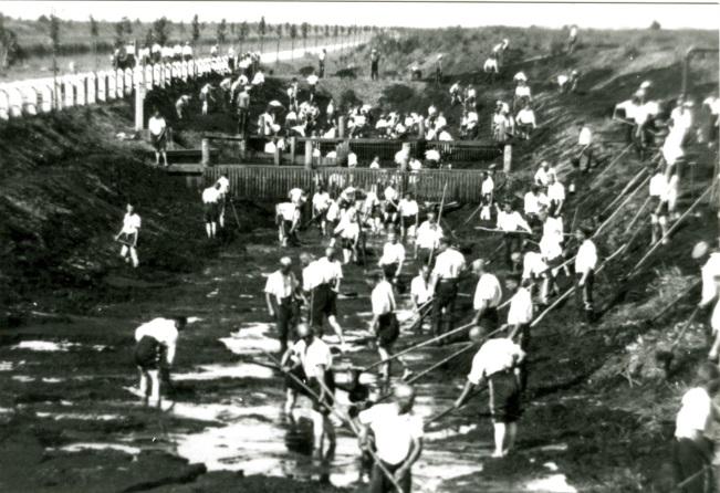 Aushebung eines Grabens, von der Lagerleitung offiziell genehmigtes Foto, 1937.  Quelle: Dokumentations- und Informationszentrum (DIZ) Emslandlager, Papenburg